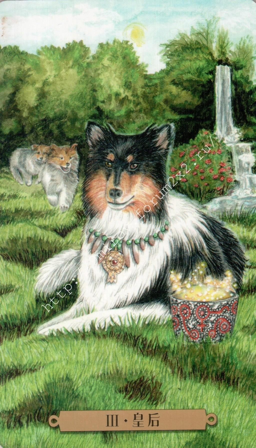 Таро мистических собак. Галерея. (китайская версия) Water176