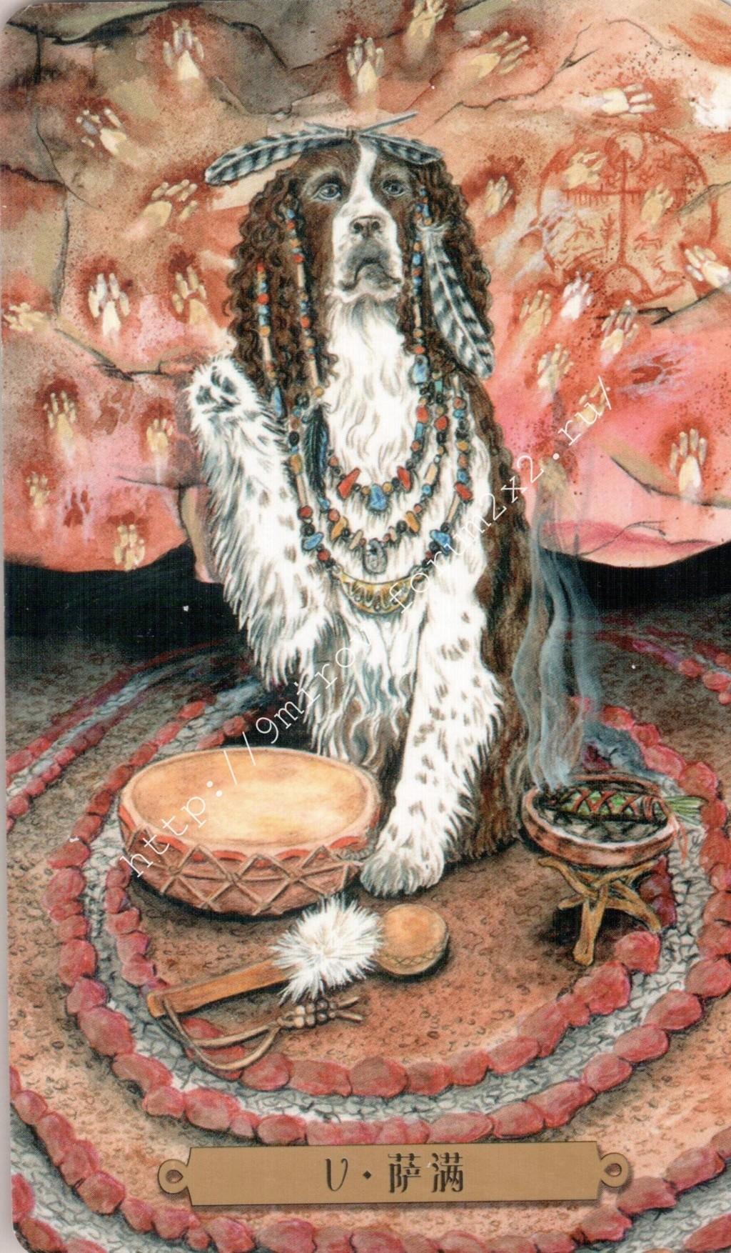 Таро мистических собак. Галерея. (китайская версия) Water178
