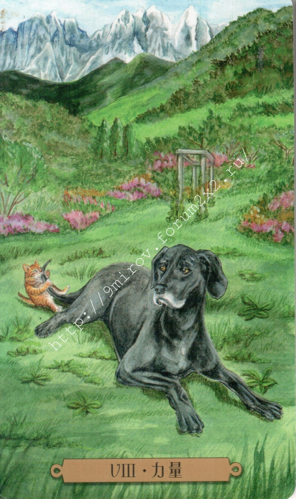 Таро мистических собак. Галерея. (китайская версия) Water181