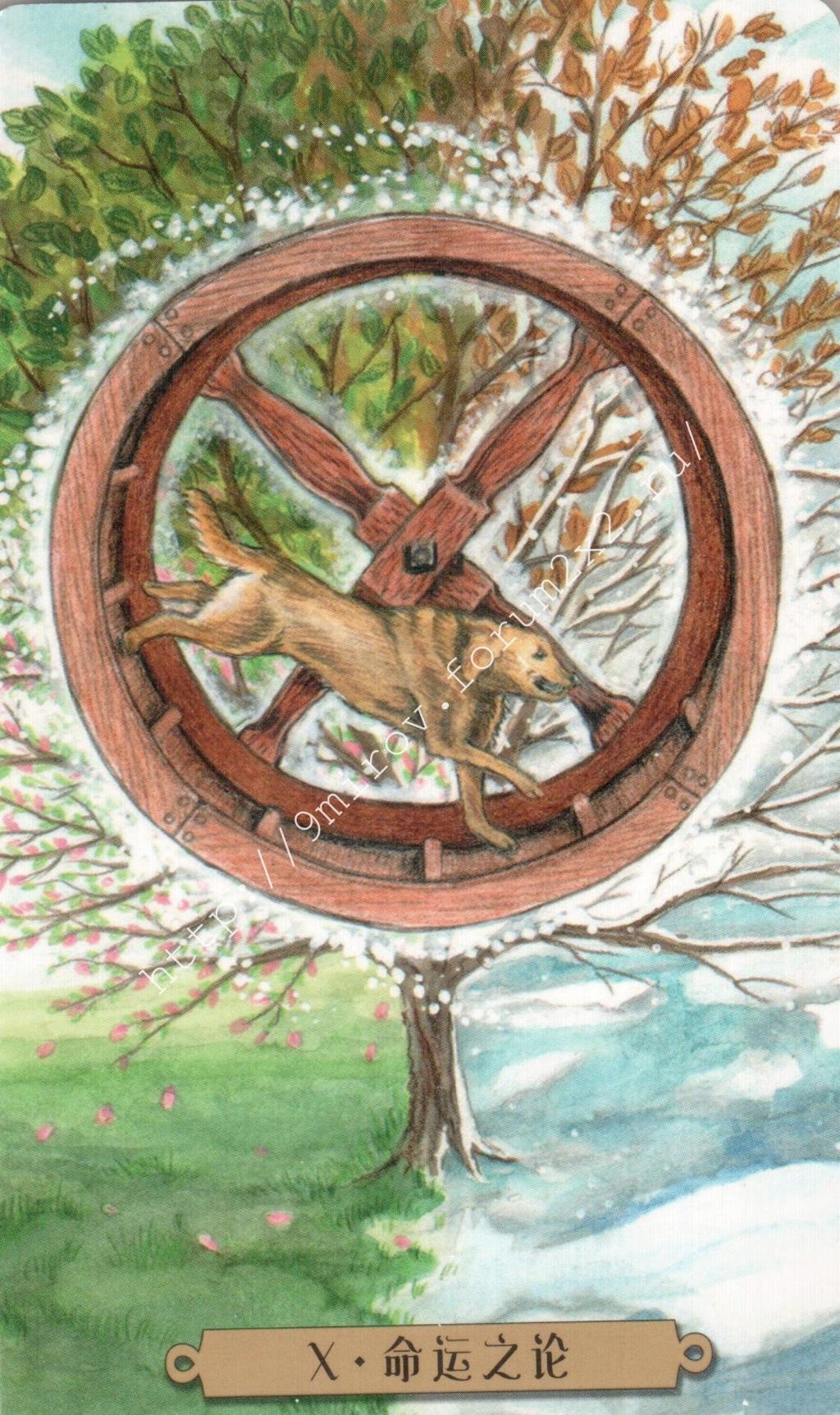 Таро мистических собак. Галерея. (китайская версия) Water183