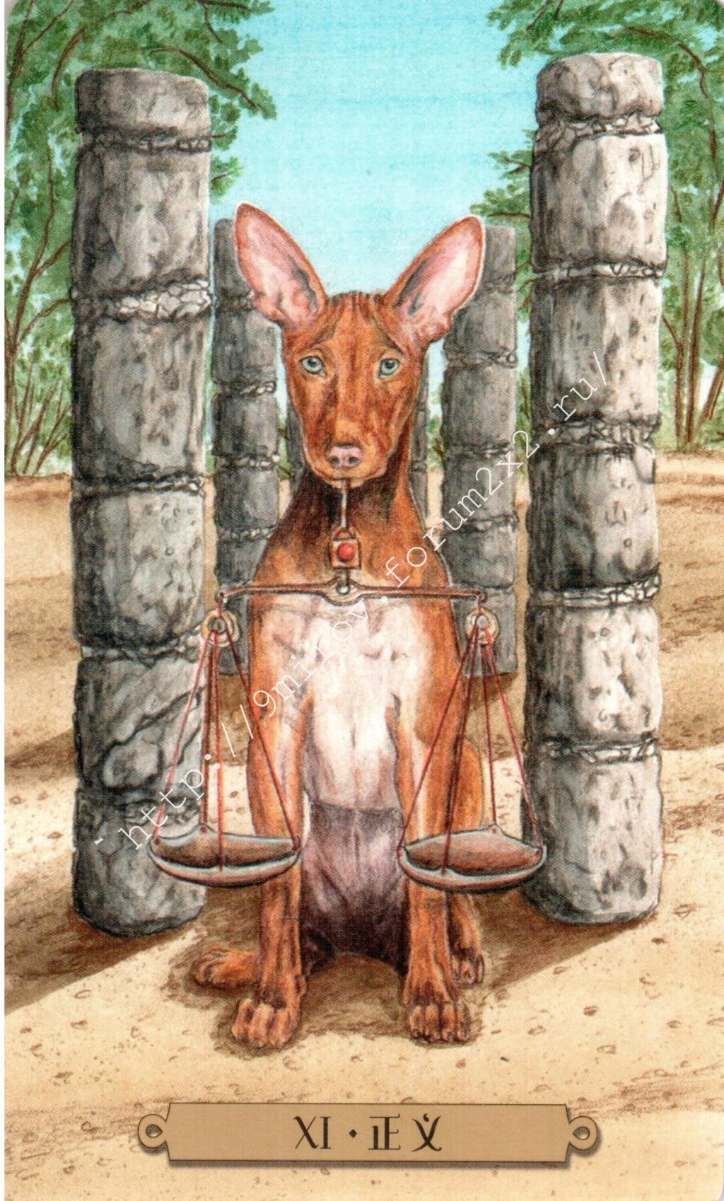 Таро мистических собак. Галерея. (китайская версия) Water184