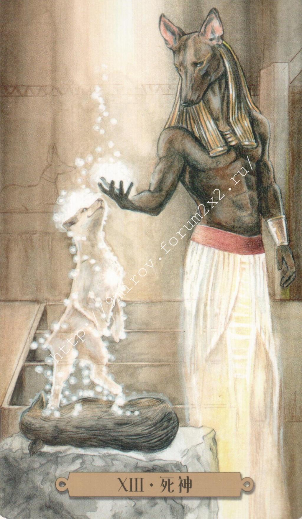 Таро мистических собак. Галерея. (китайская версия) Water186