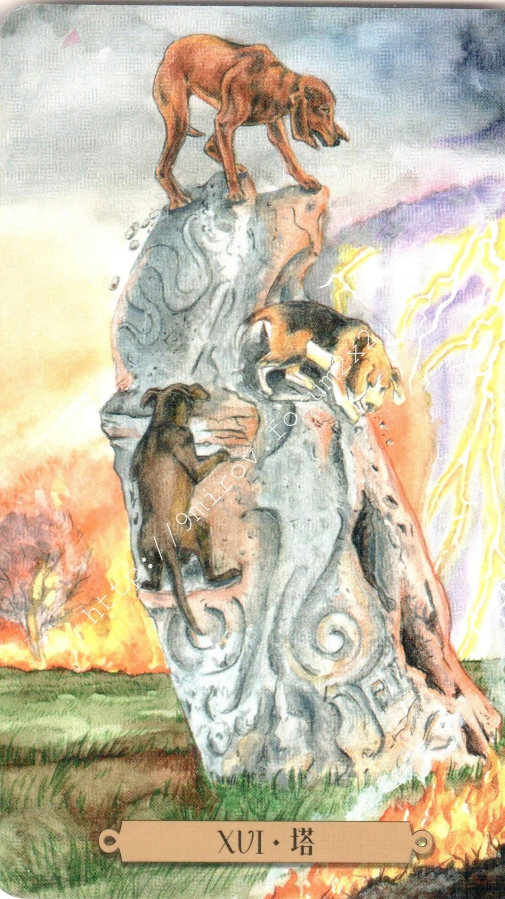 Таро мистических собак. Галерея. (китайская версия) Water189
