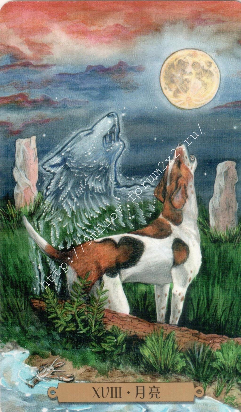 Таро мистических собак. Галерея. (китайская версия) Water191