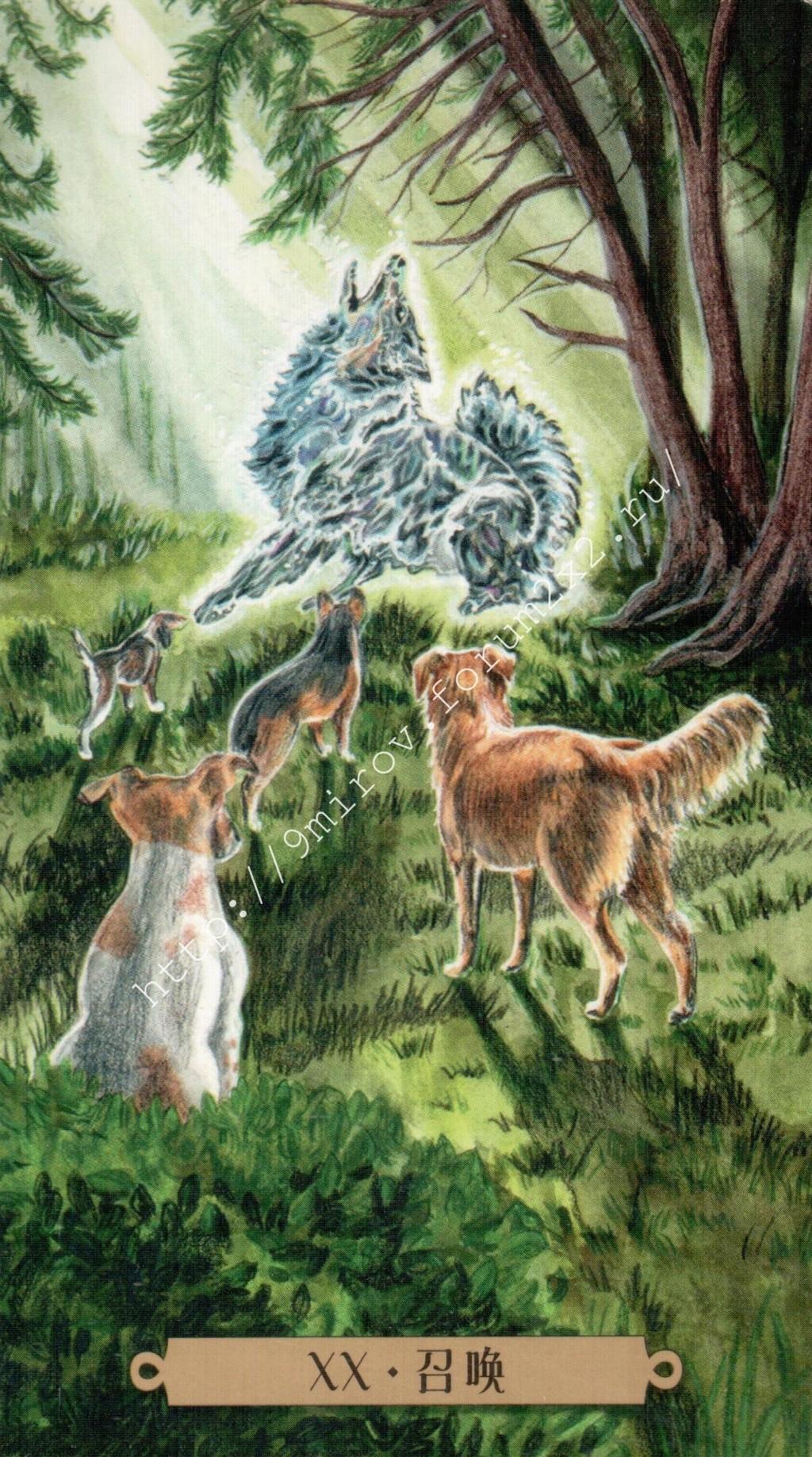 Таро мистических собак. Галерея. (китайская версия) Water193