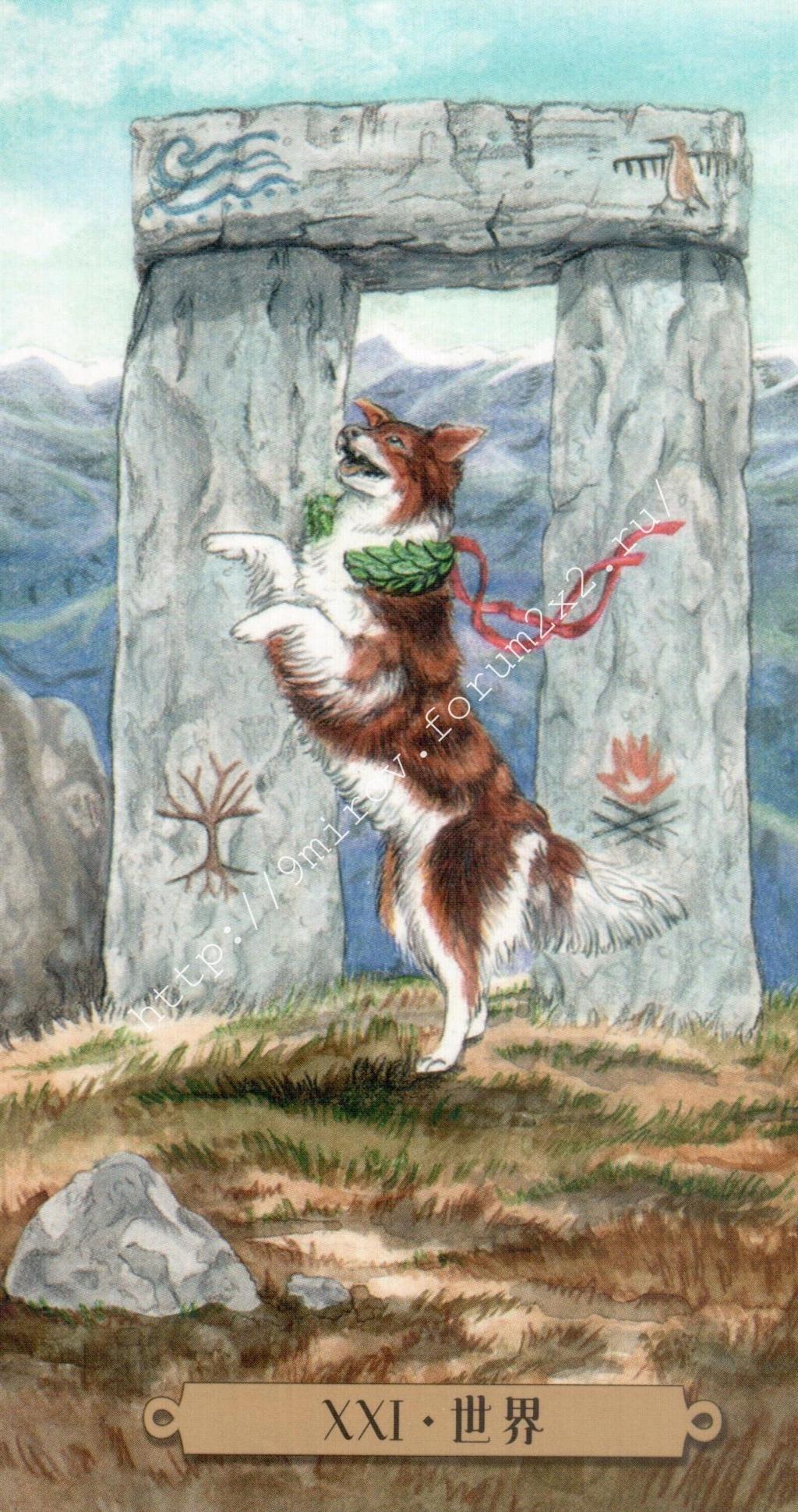 Таро мистических собак. Галерея. (китайская версия) Water194