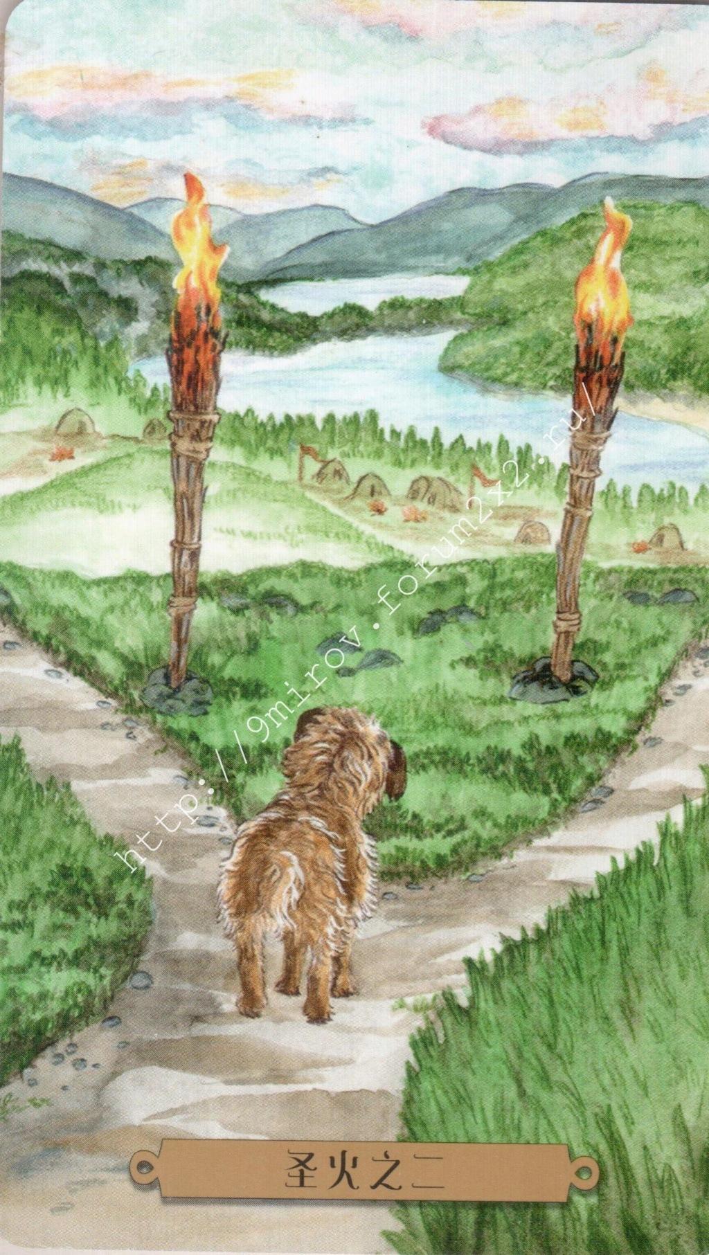 Таро мистических собак. Галерея. (китайская версия) Water196
