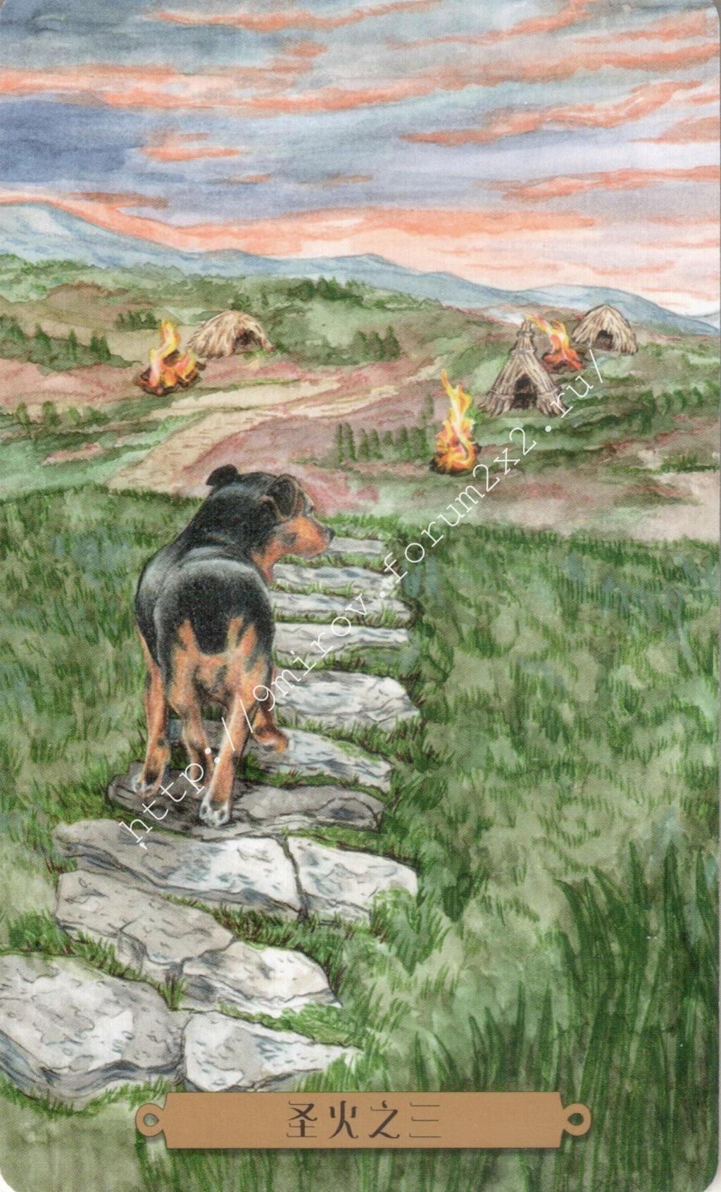 Таро мистических собак. Галерея. (китайская версия) Water197