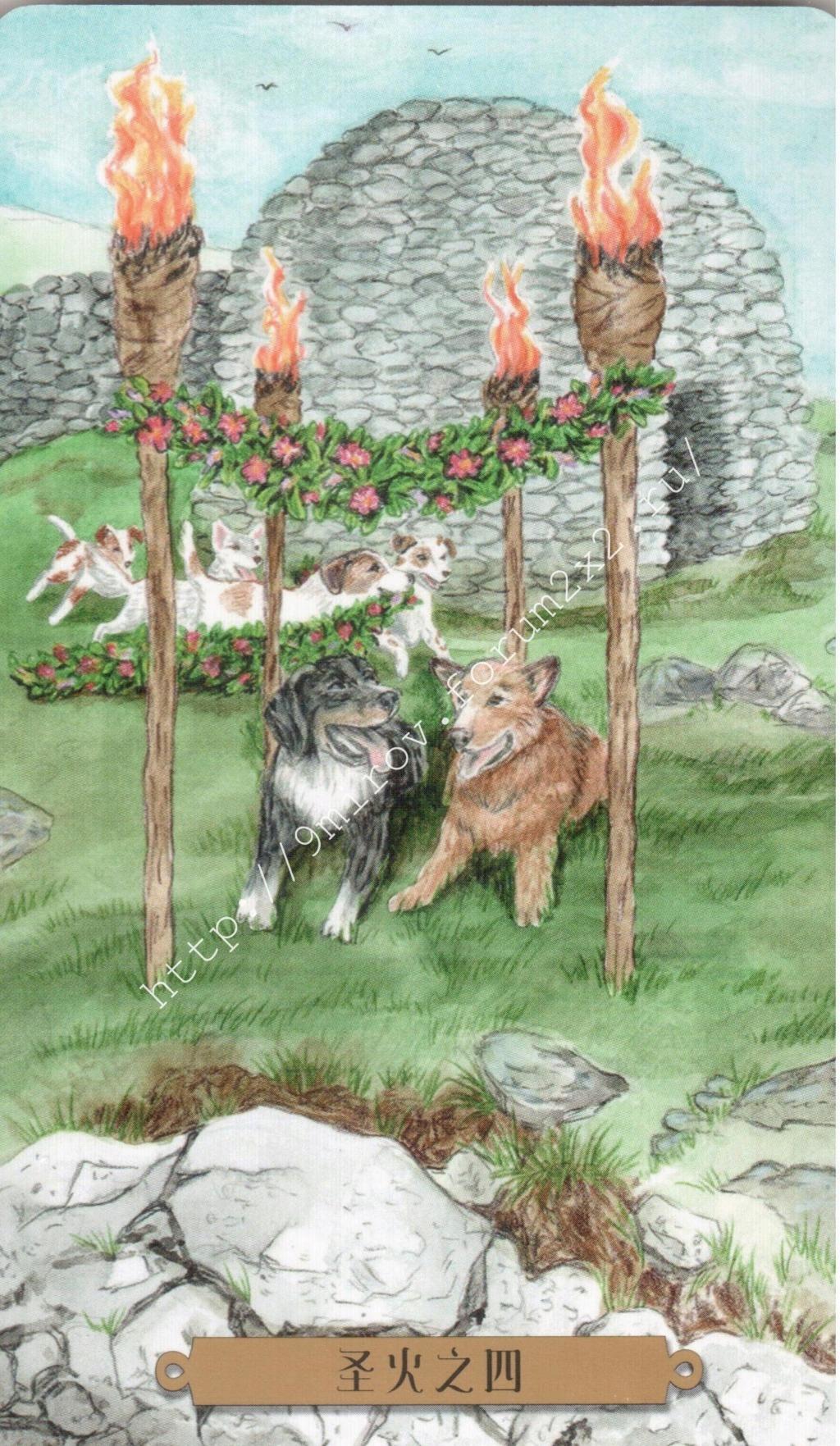 Таро мистических собак. Галерея. (китайская версия) Water198