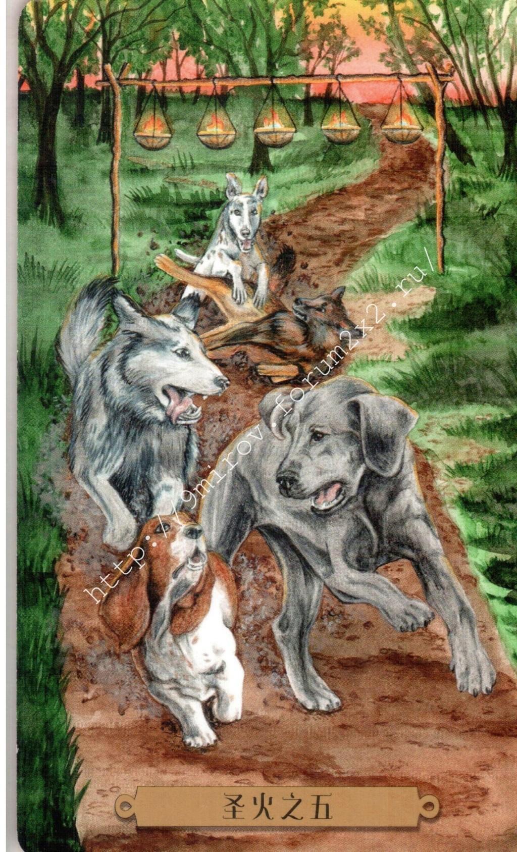 Таро мистических собак. Галерея. (китайская версия) Water199