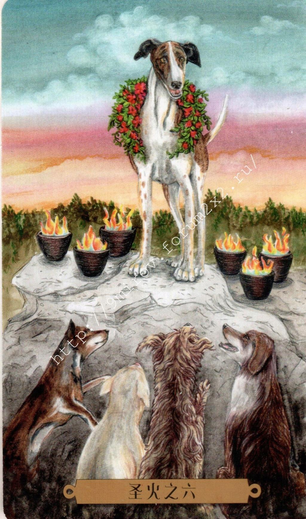 Таро мистических собак. Галерея. (китайская версия) Water200