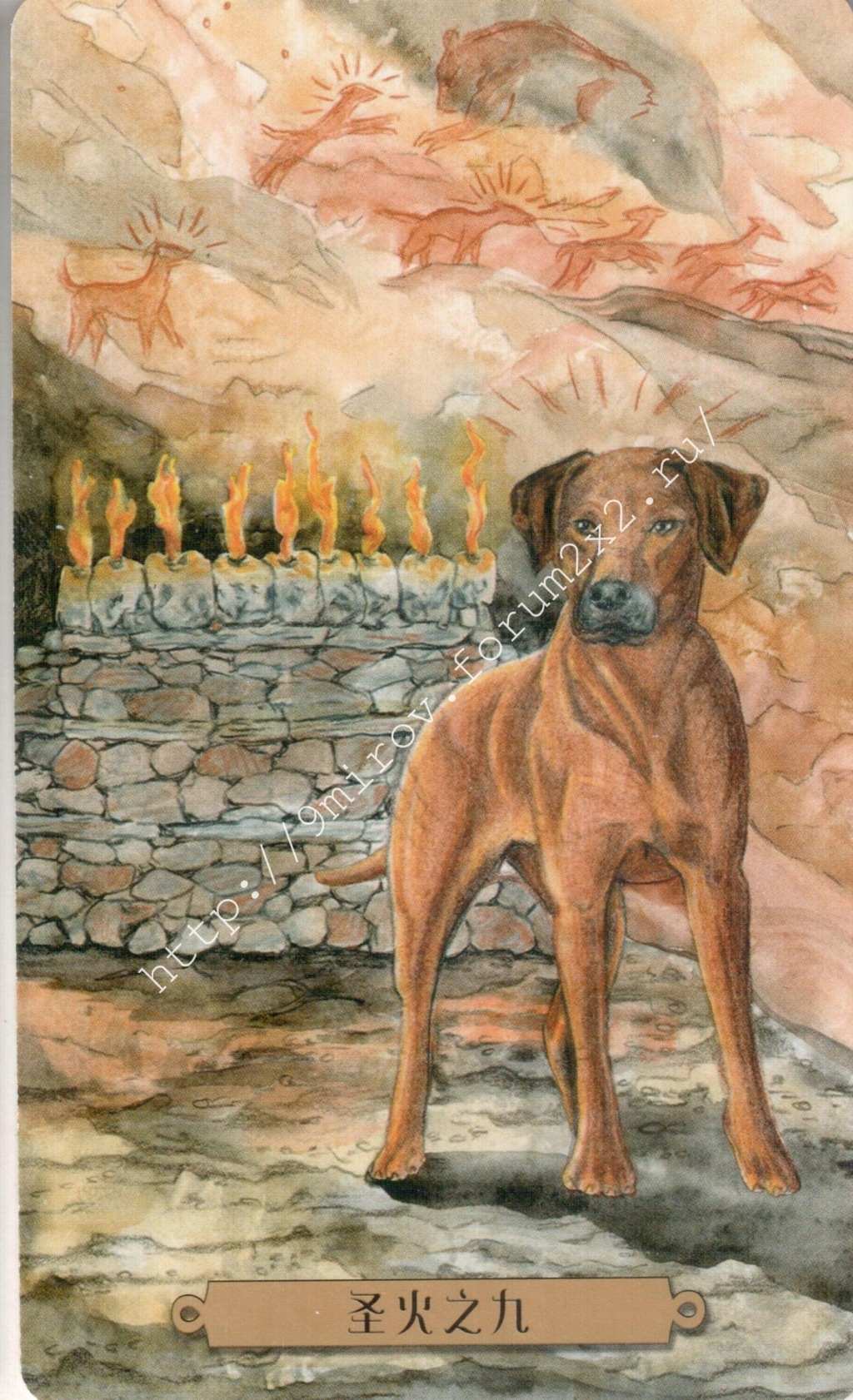 Таро мистических собак. Галерея. (китайская версия) Water203