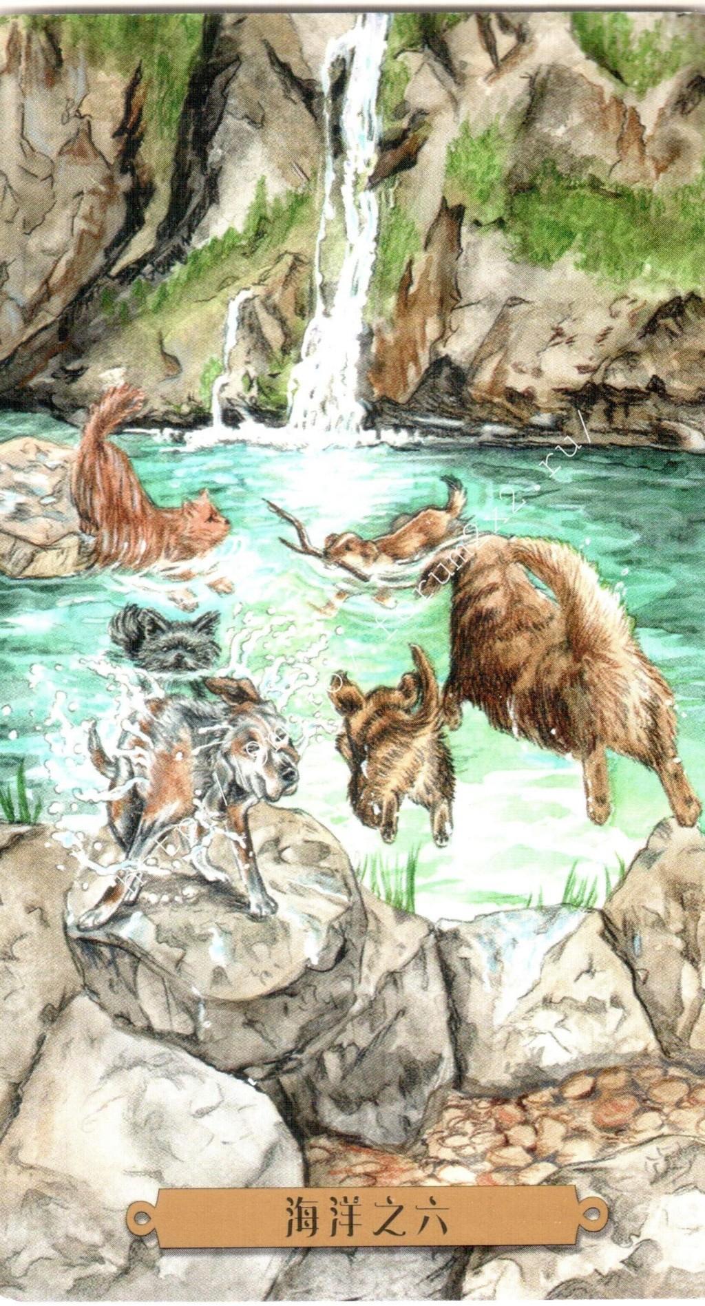 Таро мистических собак. Галерея. (китайская версия) Water214