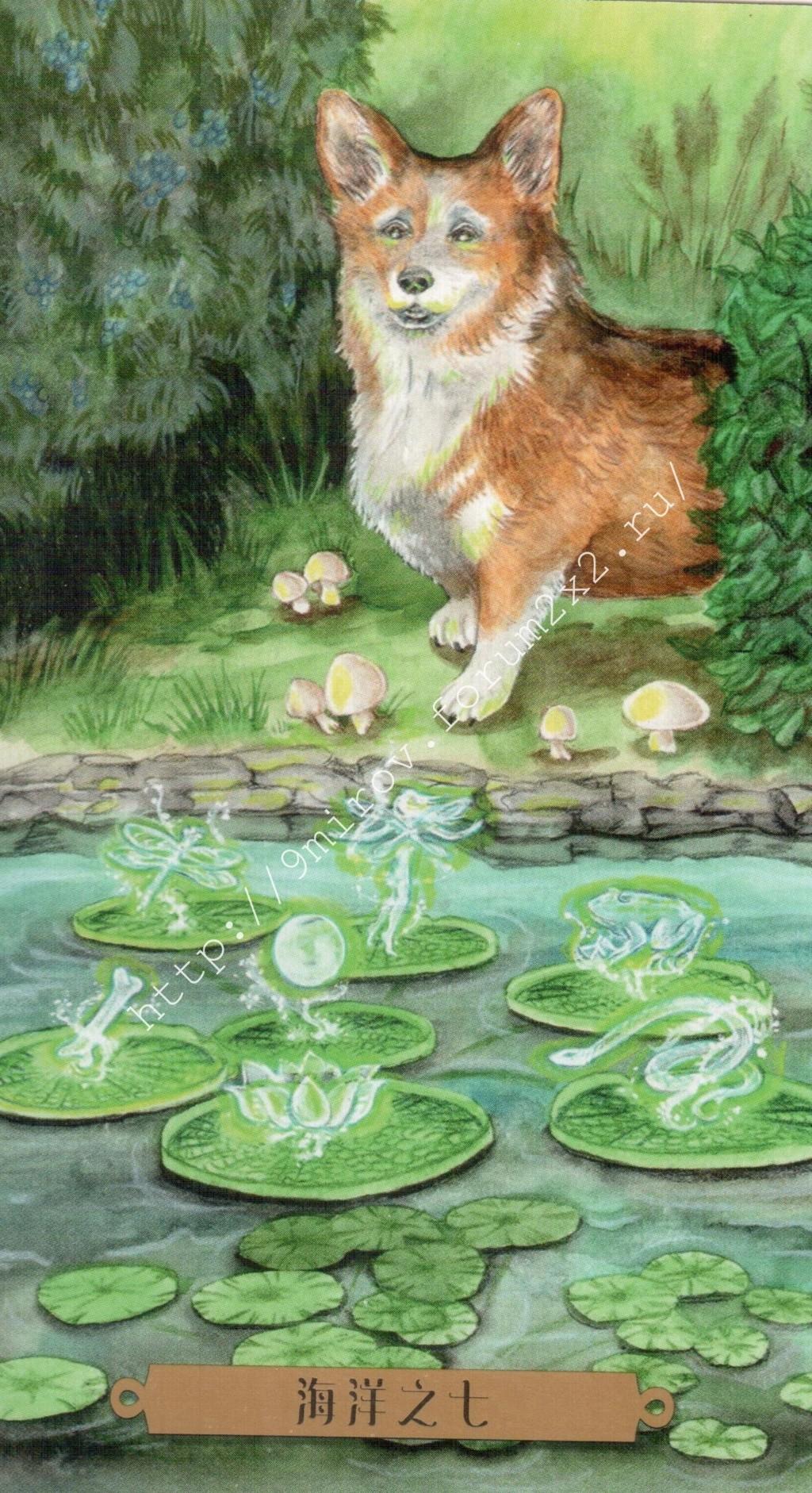 Таро мистических собак. Галерея. (китайская версия) Water215