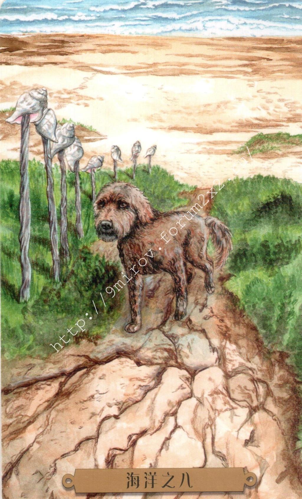 Таро мистических собак. Галерея. (китайская версия) Water216