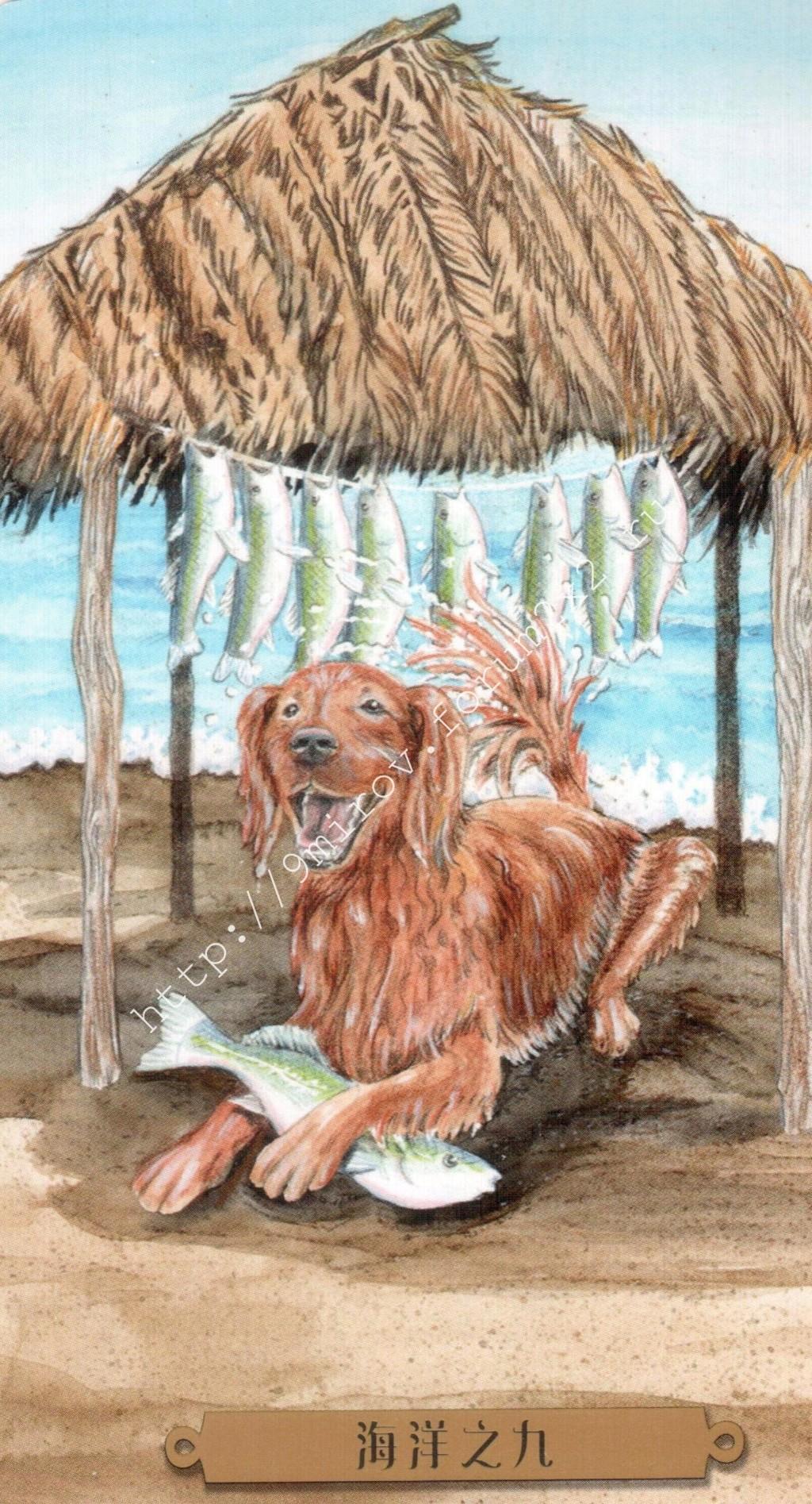 Таро мистических собак. Галерея. (китайская версия) Water217