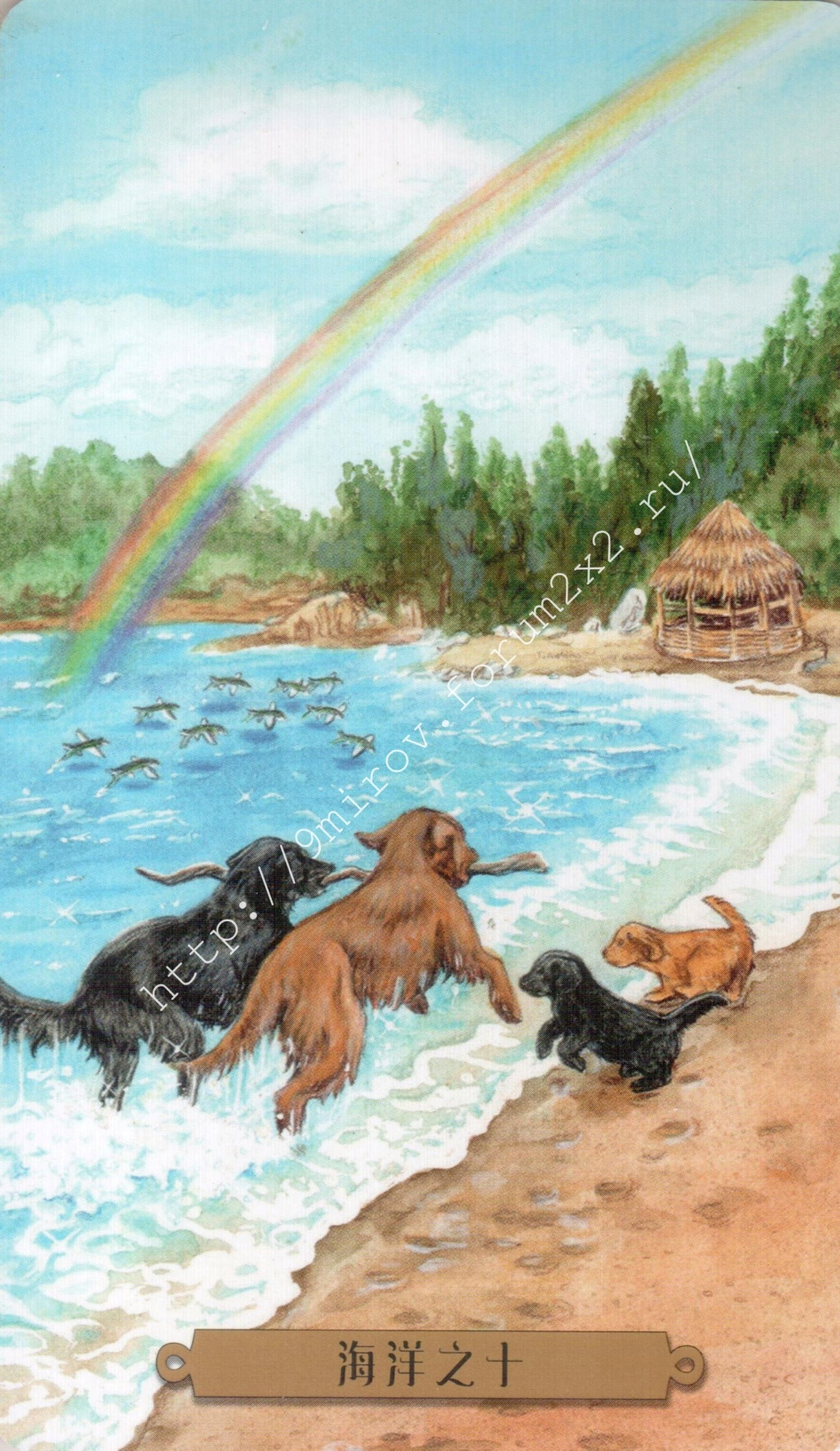 Таро мистических собак. Галерея. (китайская версия) Water218