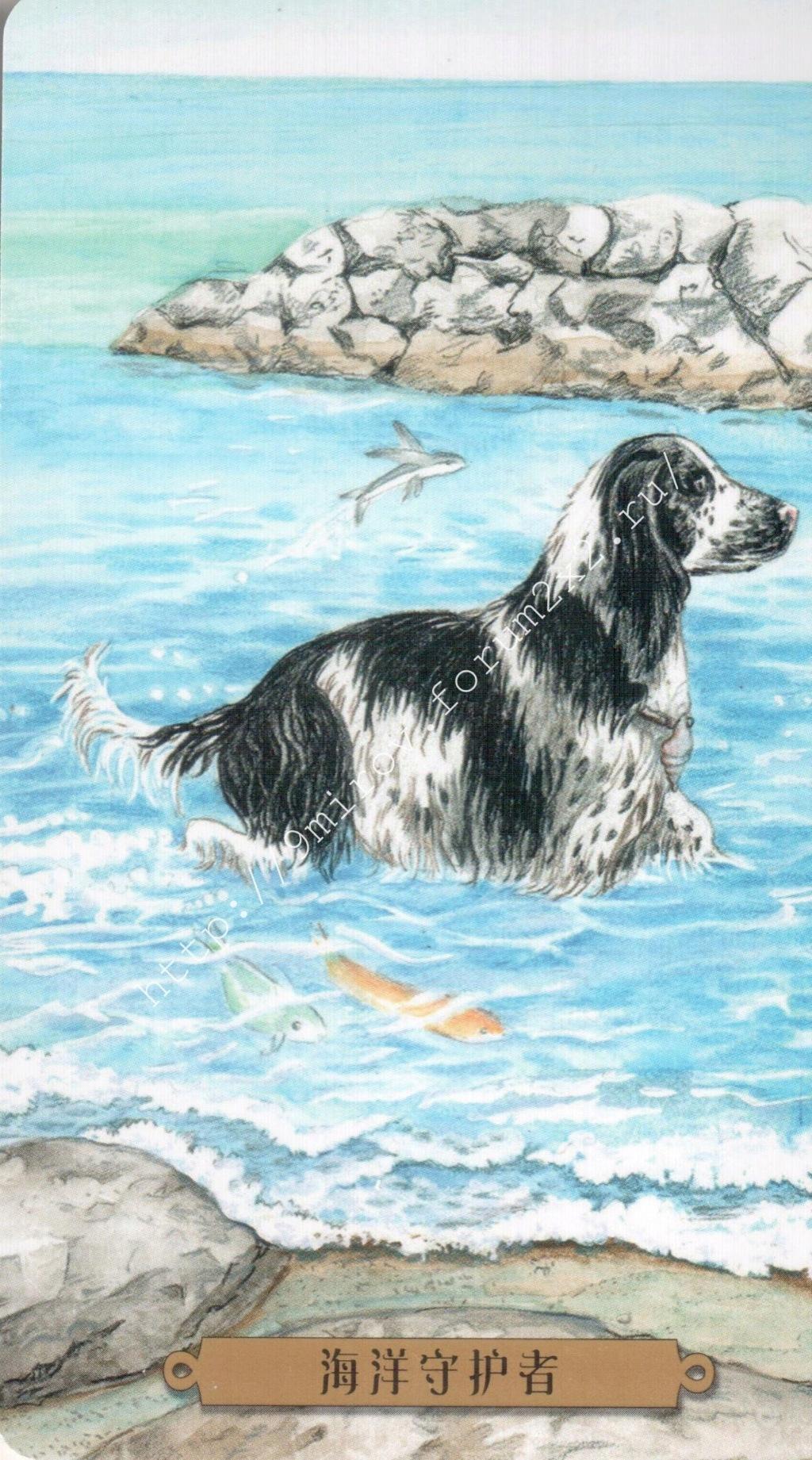Таро мистических собак. Галерея. (китайская версия) Water220