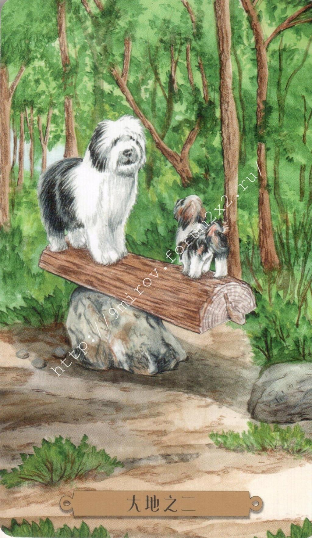 Таро мистических собак. Галерея. (китайская версия) Water224