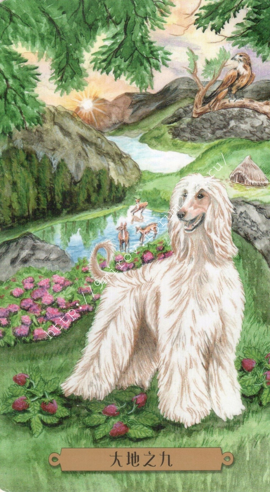 Таро мистических собак. Галерея. (китайская версия) Water231