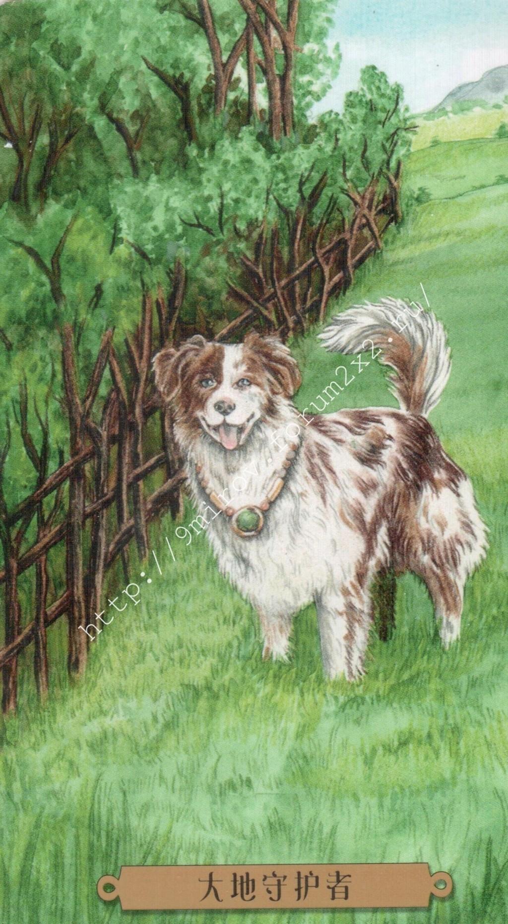 Таро мистических собак. Галерея. (китайская версия) Water234