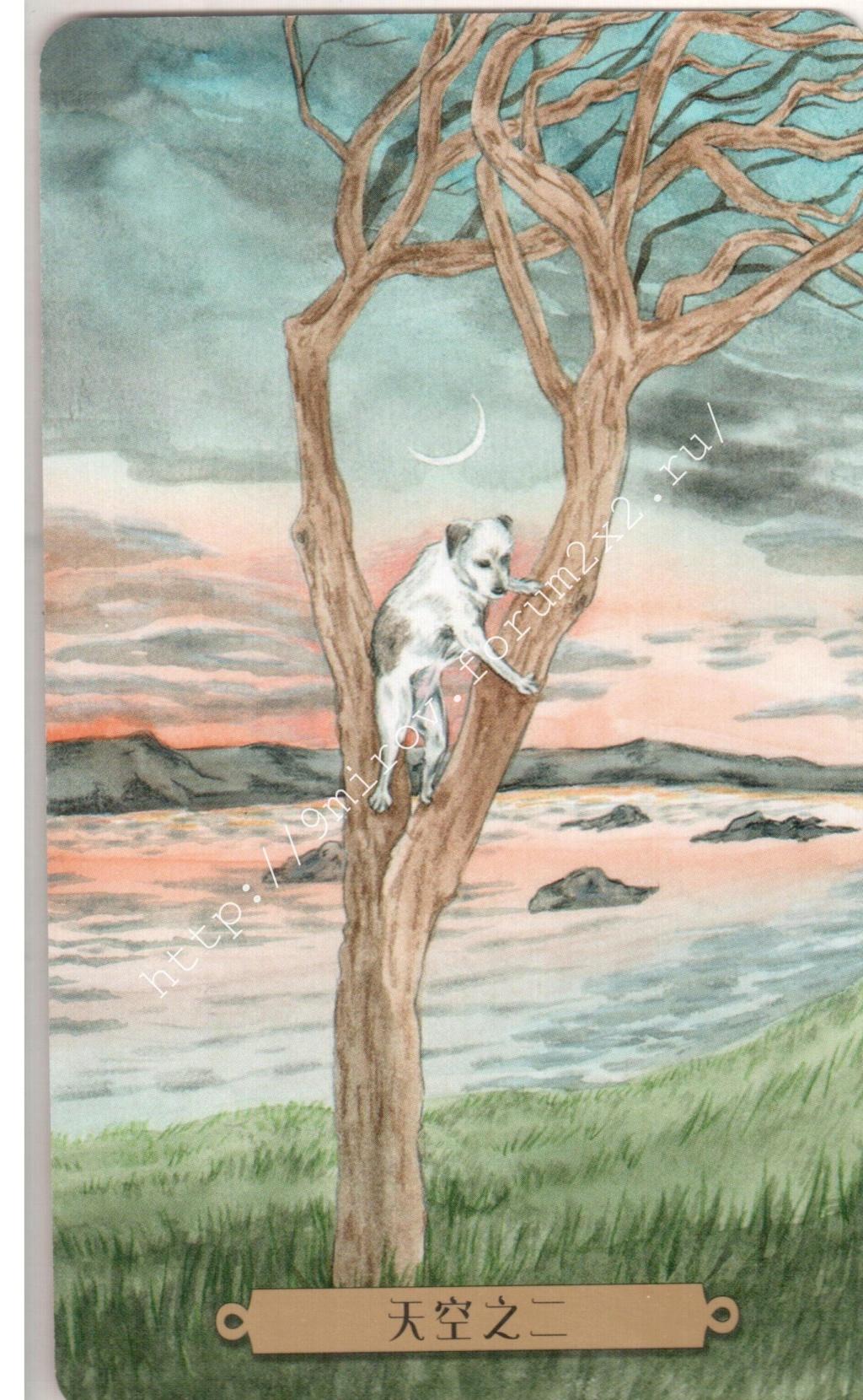 Таро мистических собак. Галерея. (китайская версия) Water238