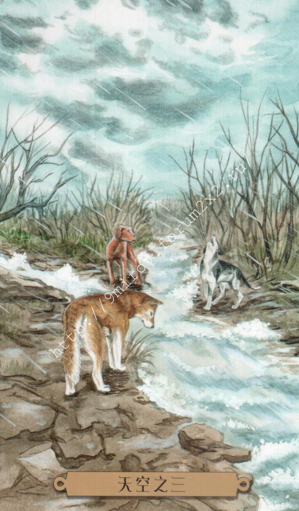 Таро мистических собак. Галерея. (китайская версия) Water239