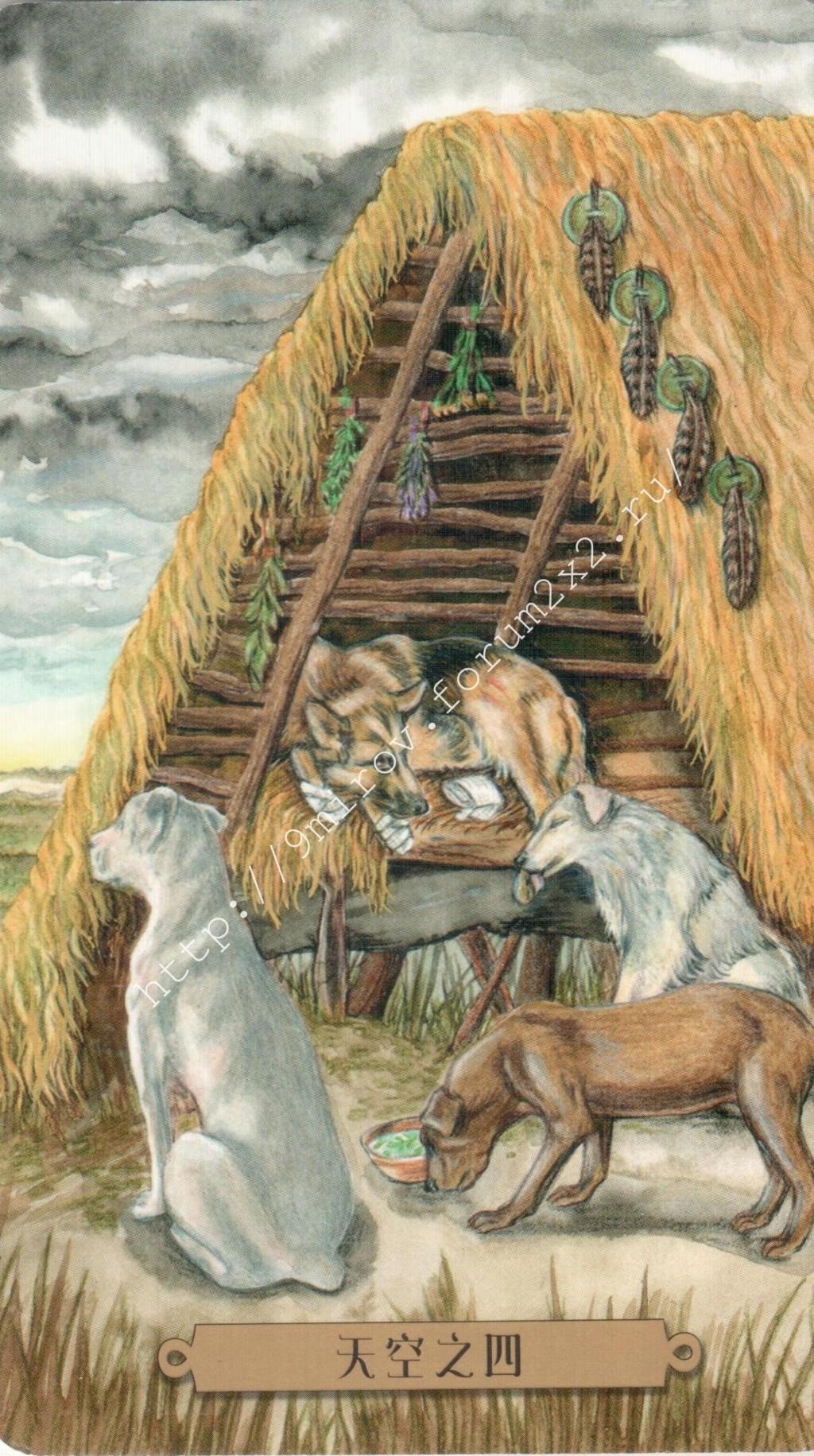 Таро мистических собак. Галерея. (китайская версия) Water240