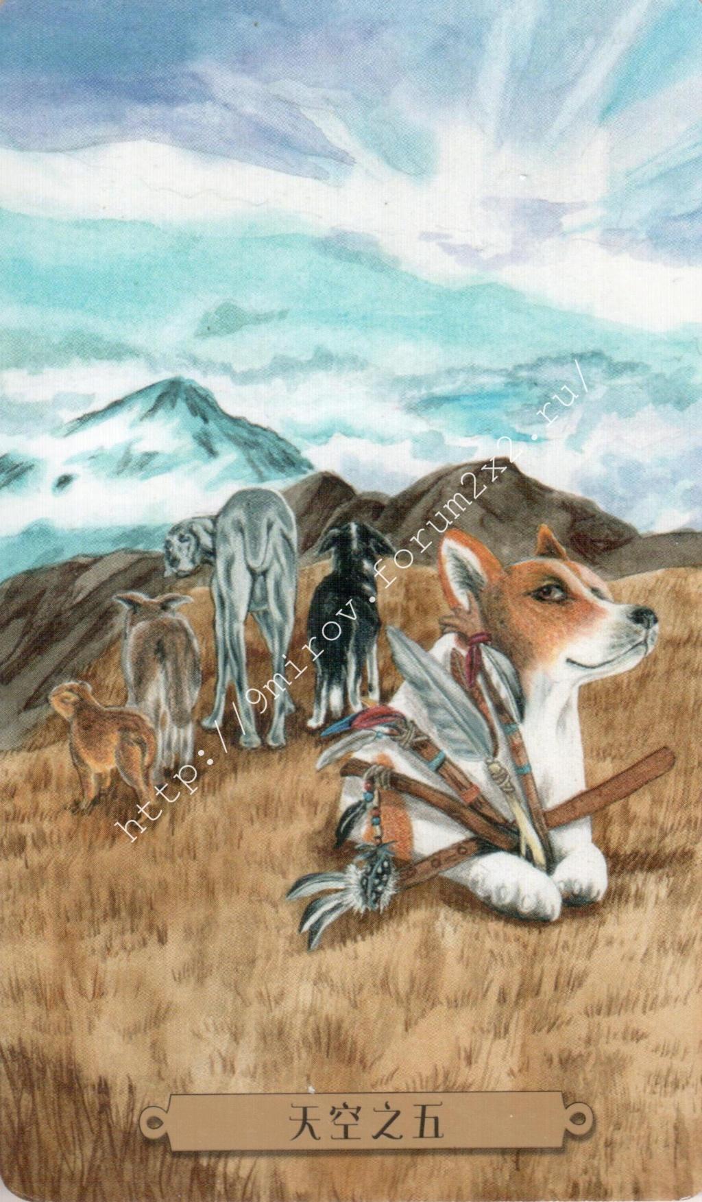Таро мистических собак. Галерея. (китайская версия) Water241