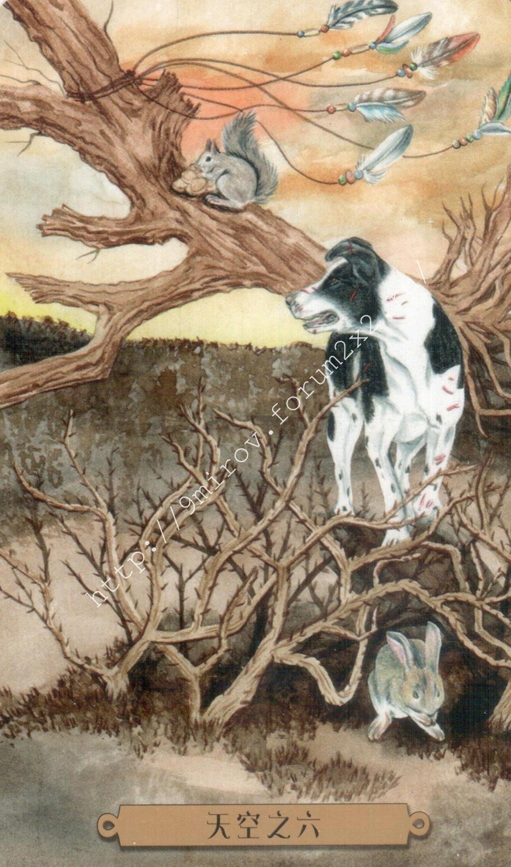 Таро мистических собак. Галерея. (китайская версия) Water242
