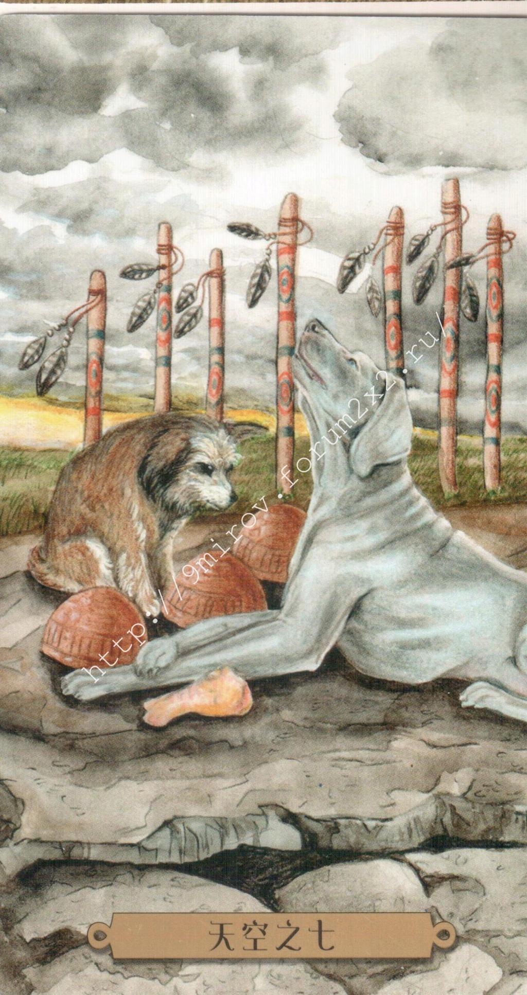 Таро мистических собак. Галерея. (китайская версия) Water243