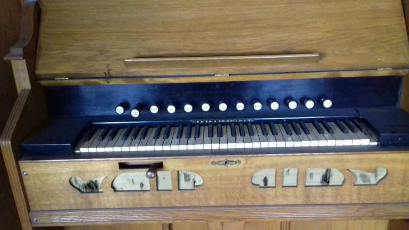 Reed organ Melodian à vendre à Paris 20190111