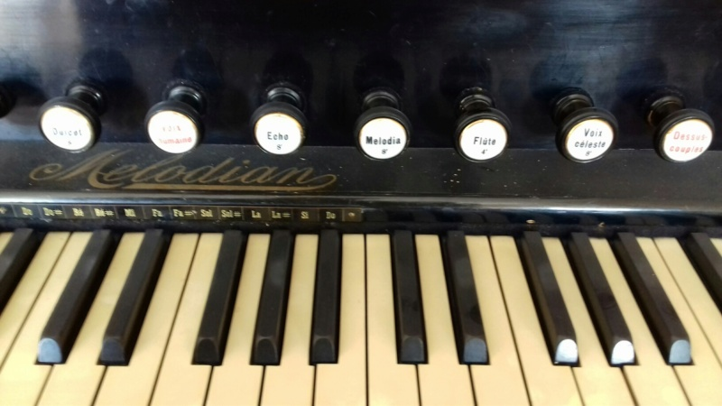 Reed organ Melodian à vendre à Paris 20190312