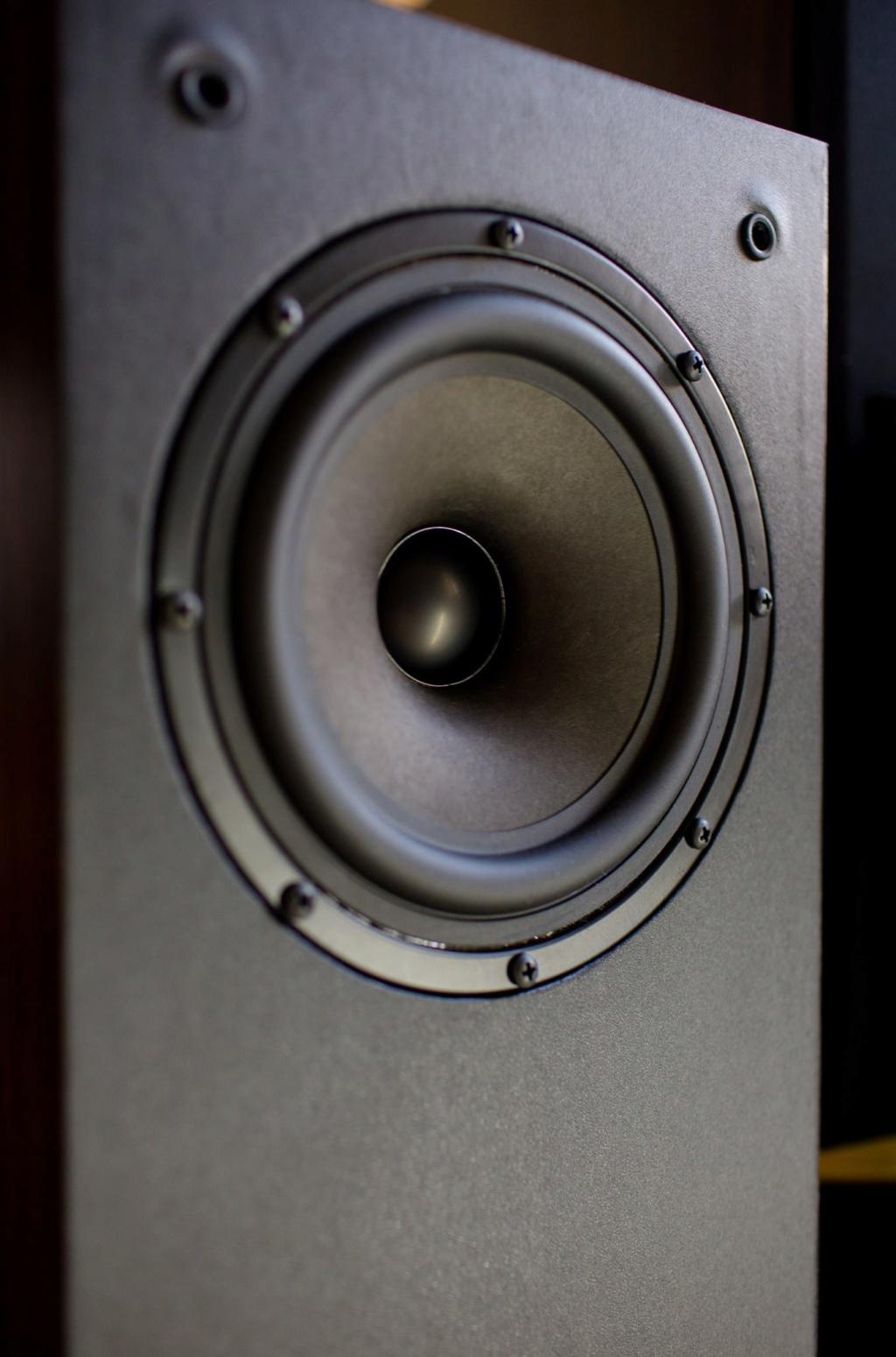 Custom Made 2 way 6.5' Coaxial Speaker (Demo Unit) 18954710