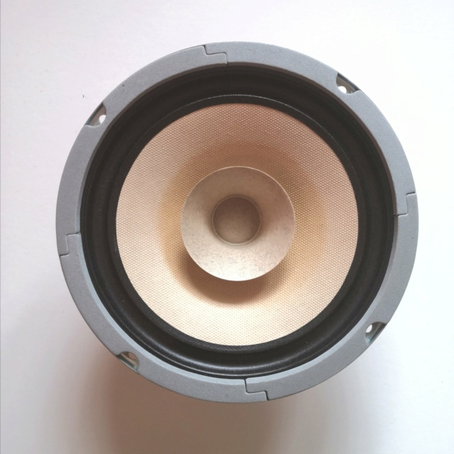 Lii Audio F-6 Fullrange Driver (6 inches) F610