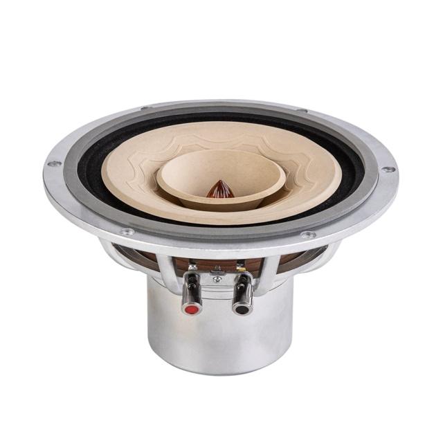 Lii Audio Silver 8 Fullrange Driver (8 inch) Silver14