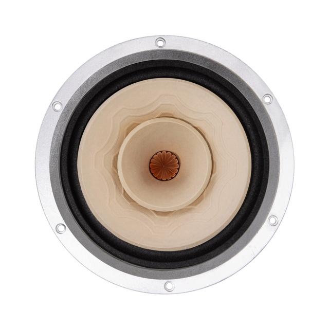 Lii Audio Silver 8 Fullrange Driver (8 inch) Silver15