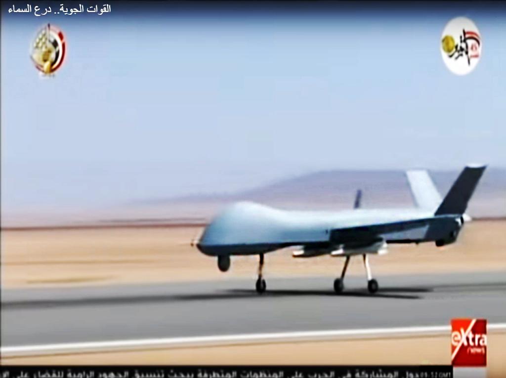 الزواحف الطائرة – درونات في خدمة الحروب اللاتماثلية Wing_l10