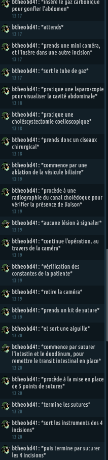 [C.H.U] Rapport d'actions RP de btheobd41 411