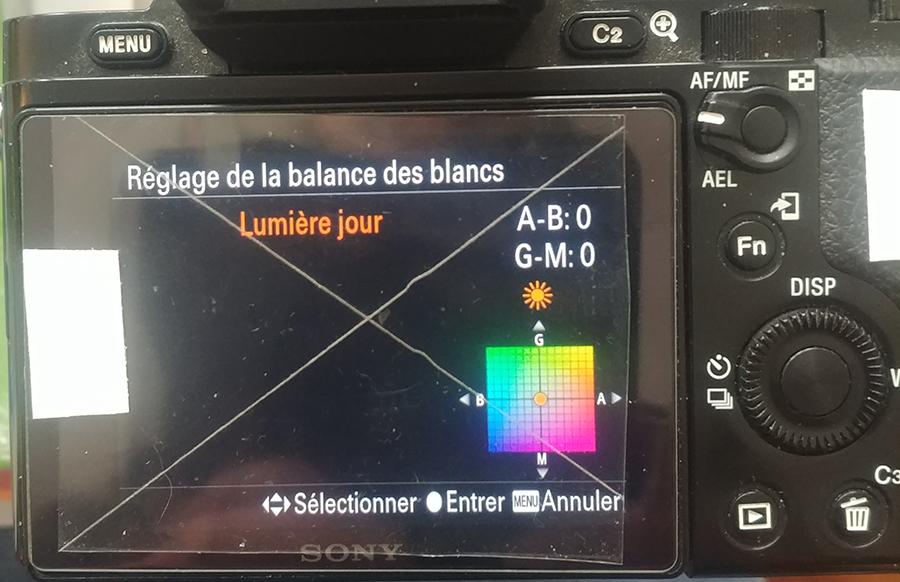 Sony A7S astrodon 1_sony10