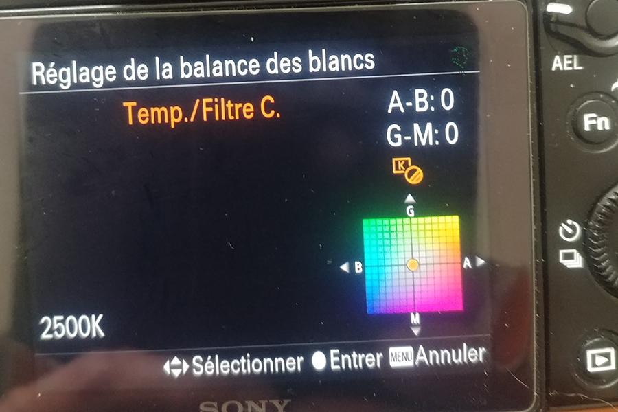 Sony A7S astrodon 3_sony10