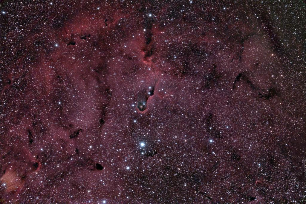 IC1396 Céphée Ic139611