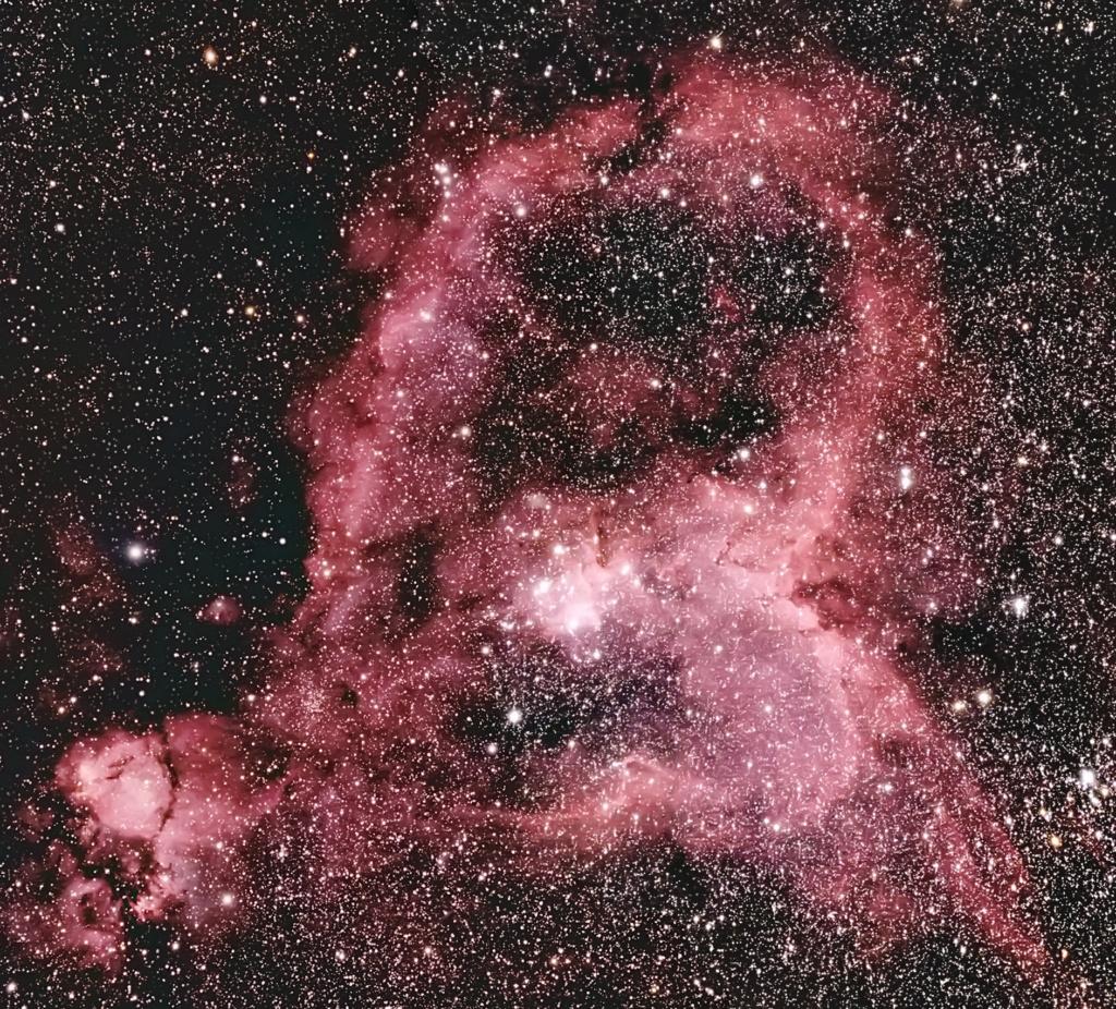 NGC2238 Rosette Ic180510