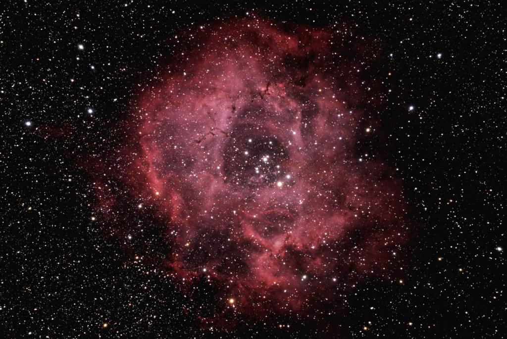 NGC2238 Rosette Ngc22310
