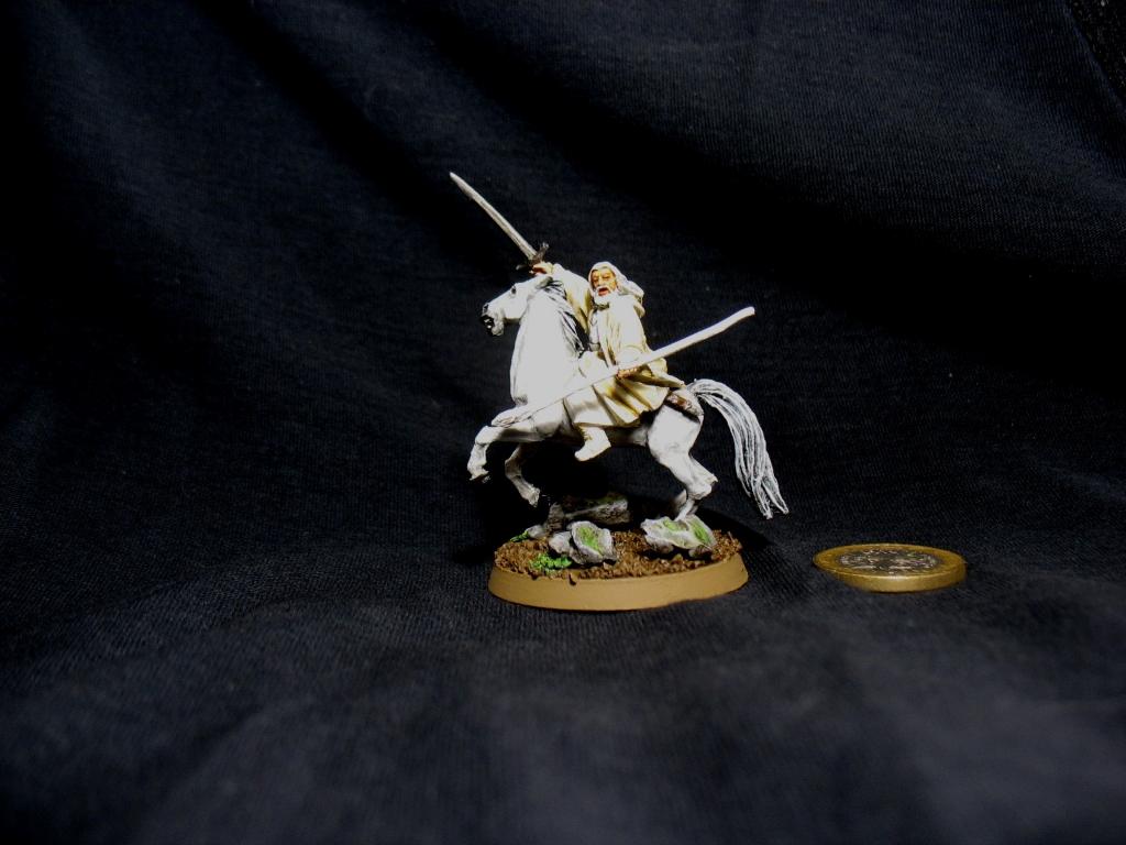 Gandalf le Blanc sur Shadowfax G110