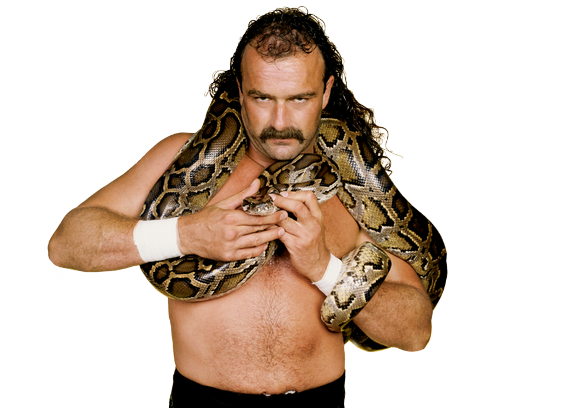 """Jake """"The Snake"""" Roberts (5) Tr72"""