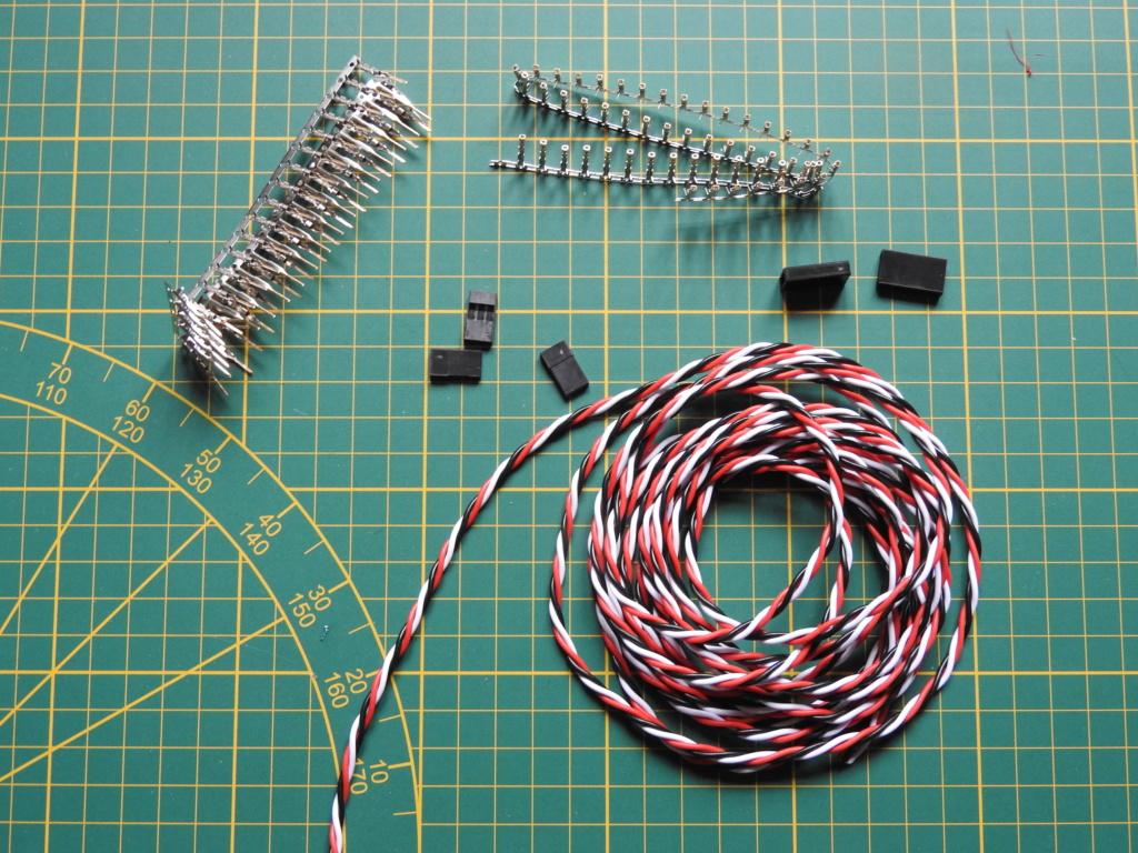 Recherche câble extension servo 50 à 60cm male/male Dscn1810