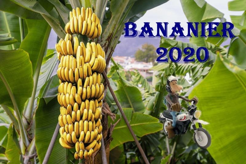 Meilleurs voeux 2020 202010