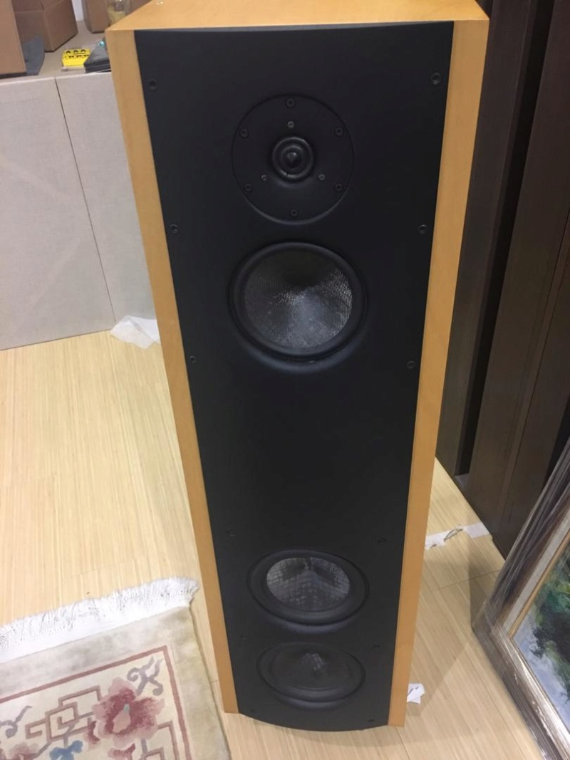 Magico V3 Loudspeaker  Photo-27