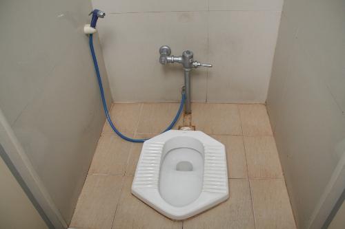Pourquoi la France n'est pas encore fan des WC «à la japonaise» Toilet10